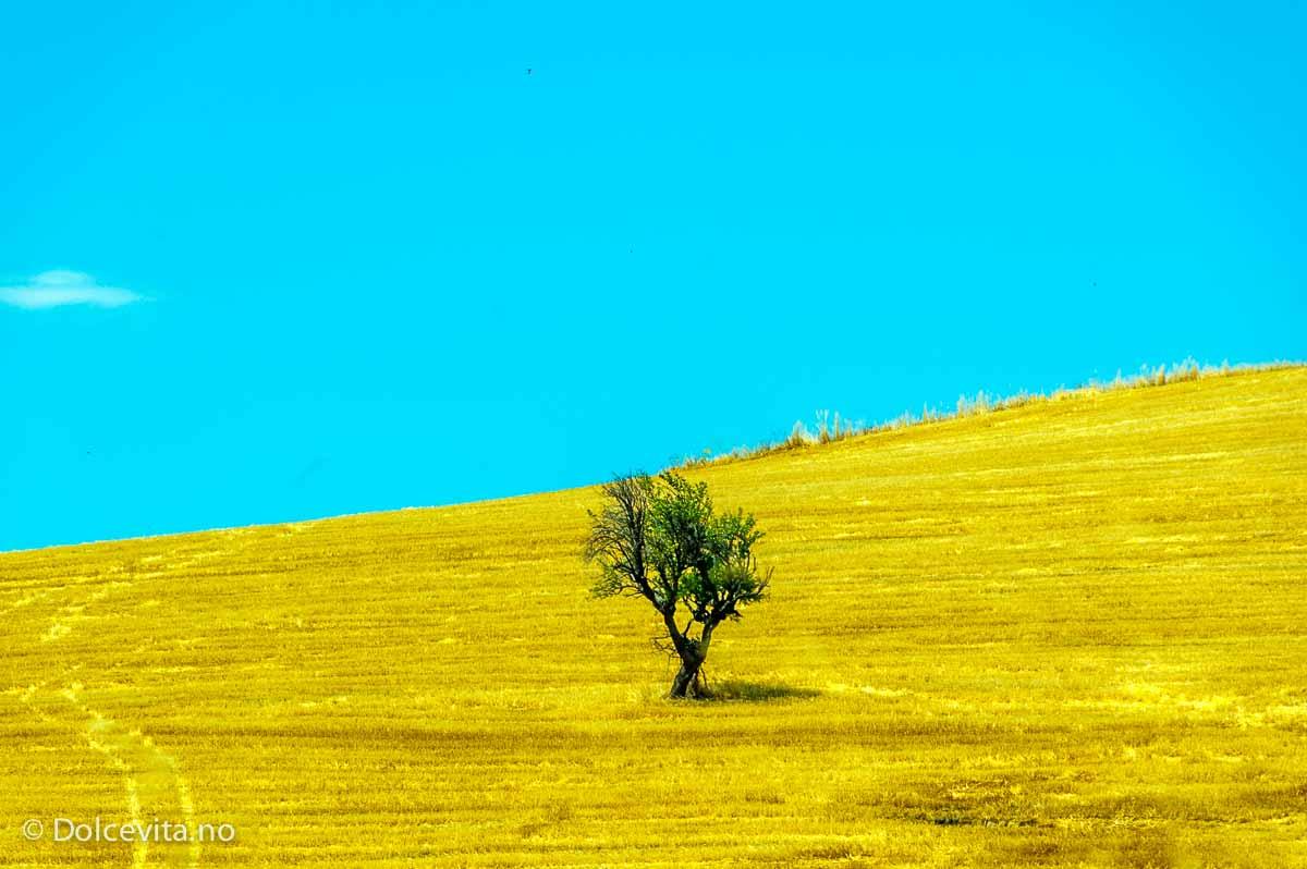 Calabria - Dolcevita.no