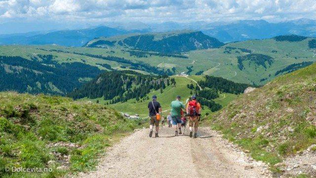 Rundt Sassopiatto - Dolomitten - Dolcevita.no
