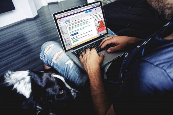 in2it-datajobbing-hund-604x400